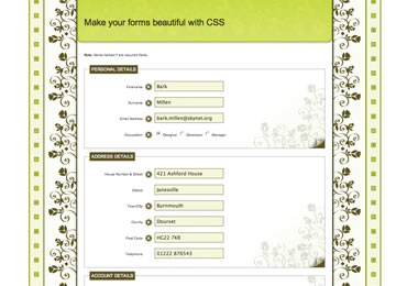 CSS Form Styling
