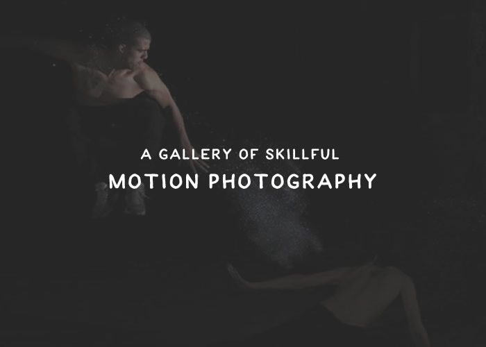 A Gallery of Skillful Motion Photography