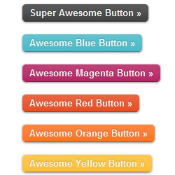 Styling the Button Element