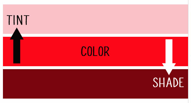 Color Theory in Design