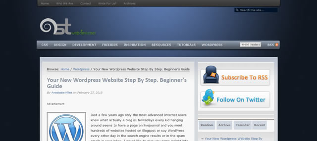 Your New WordPress Website Step By Step. Beginner's Guide