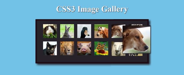 Fancy Image Gallery with CSS3