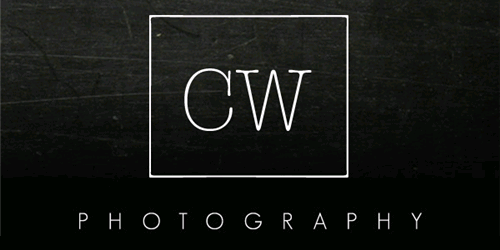 Art Photographer Logo