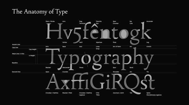 Font Anatomy Wallpaper