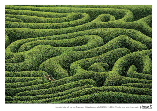 Print Ad - Tea Estate Maze