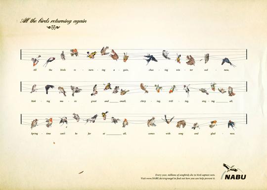 Print Ad - Captured Birds