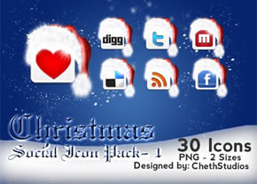 Social Networking Icons vol. 1