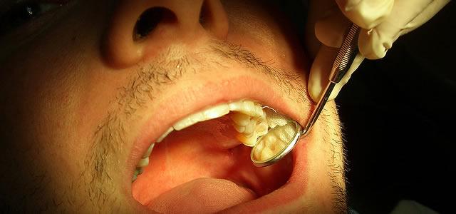 Doctor/Dentist Visit