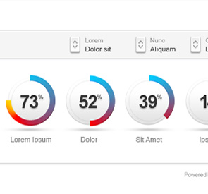 Showcase of beautifully designed charts graphs dynamic pie chart ccuart