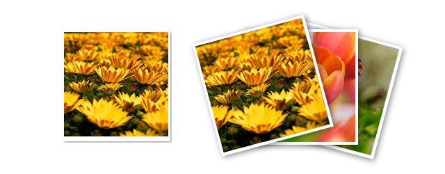 Google Plus Photo Stack Animation using jQuery and CSS3