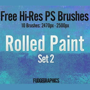 Rolled Paint Set 2 10 Brushes