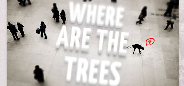 CSS3 Tilt-Shift Text Experiment - Where are the trees