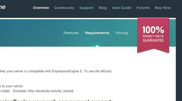 ExpressionEngine blogging CMS platform