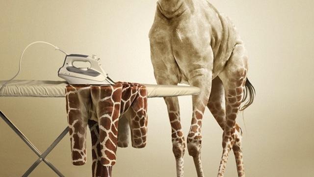 creating an Undress Giraffe image