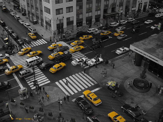 b and w shot coloring Yellow City