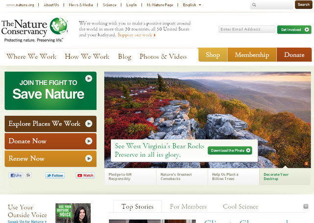 The color theme of The Nature Conservancy charity website is soothing and subtle