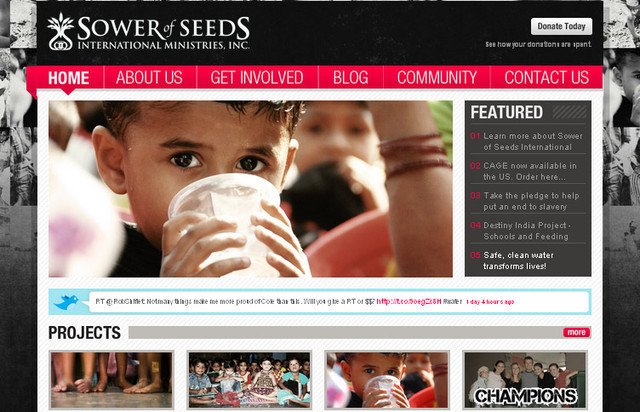 You will notice a somewhat unique level of contrast in the colors of the Sower of Seeds web design