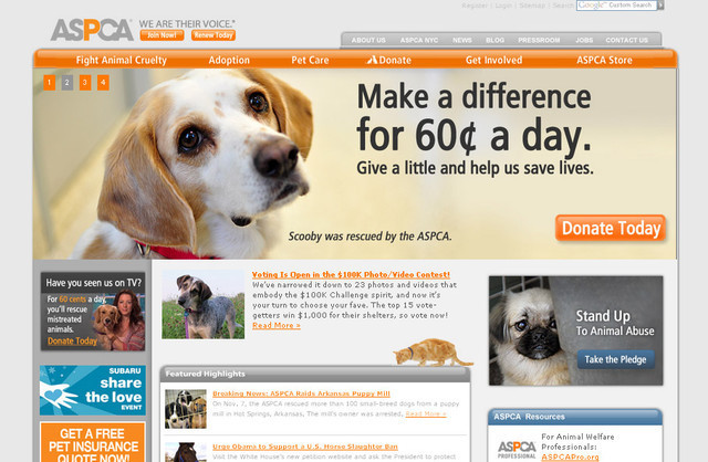 The ASPCA design plays extremely well with the color usage
