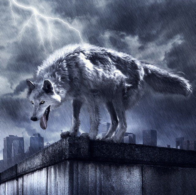 Photo Manipulation of a Wolf in Stormy Weather tutorial in Photoshop