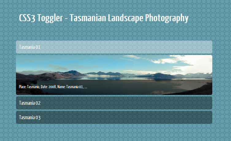 Image Gallery Toggler with opened menu item accordian tutorial css