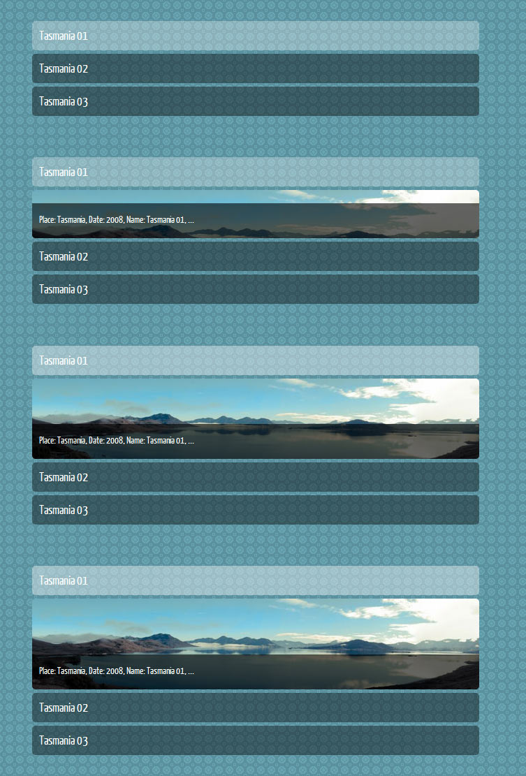 Image Gallery Toggler with opend menu item accordian tutorial css