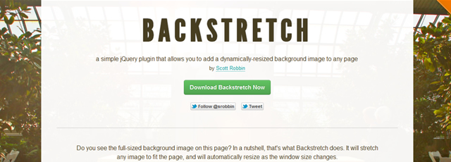 Backstretch is a simple plugin that allows you to add a dynamically-resized background images