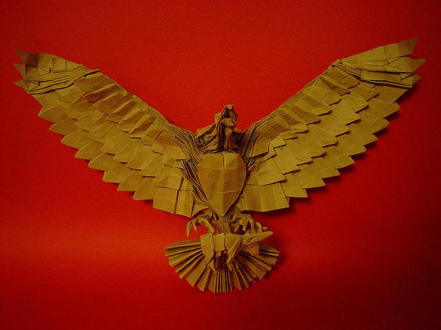Aguila cazando (Hunting eagle)