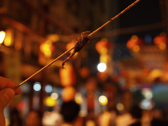 Wan Fujing is an example of Beautiful Bokeh Photography