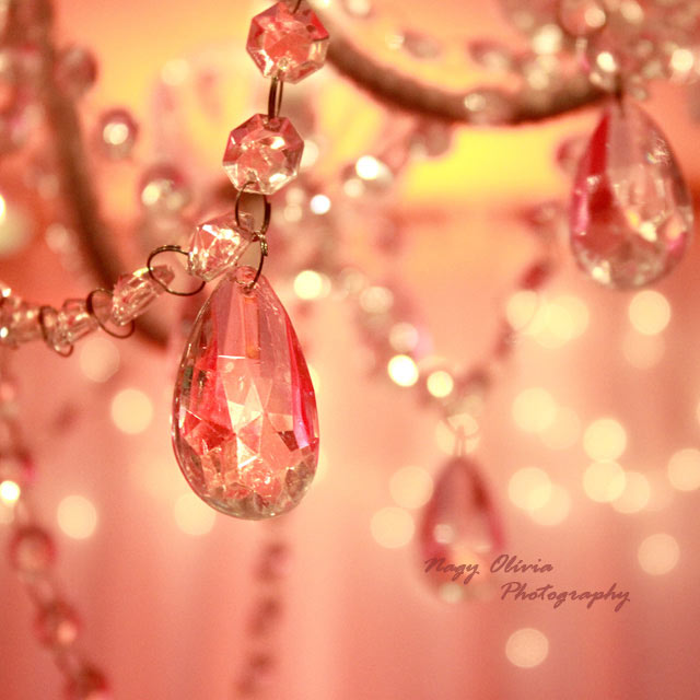 Lustre Bokeh Photography