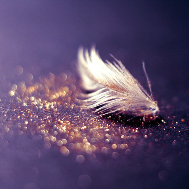 Golden Glitter is an example of Beautiful Bokeh Photography