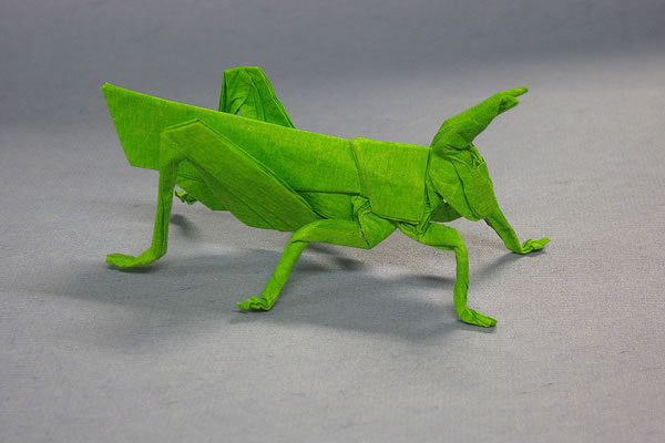 origami-thumb