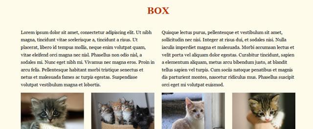 Box CSS Framework