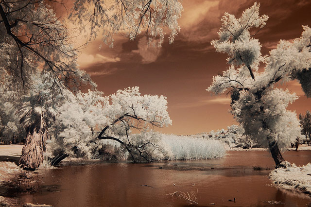infrared photography Lindo Lake Infrared