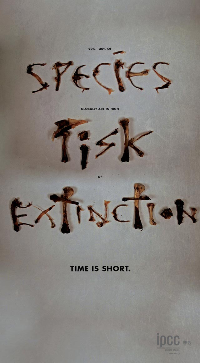Species Risk Extinction advertsing typography