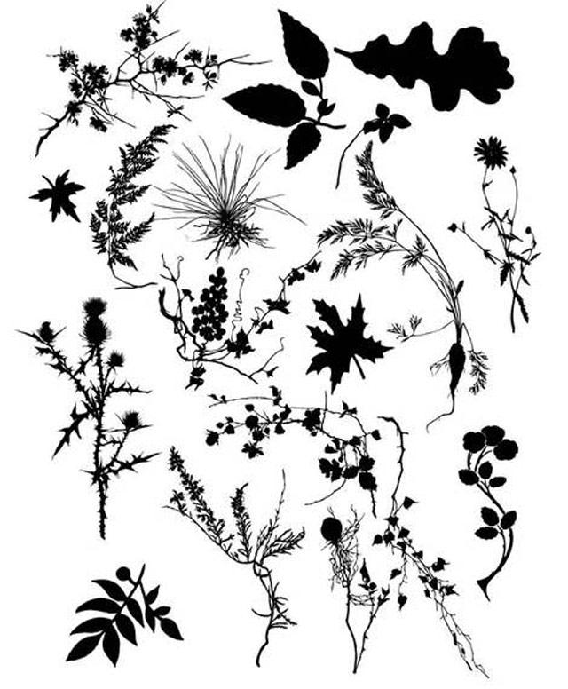 Floral's