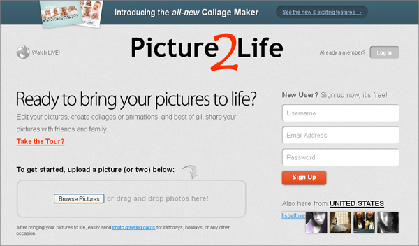 Picture2Life is an easy-to-use free online tool which was built to help you to edit pictures