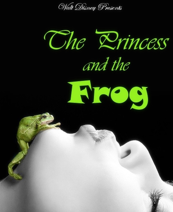 creative minimal poster of the Princess and the Frog movie