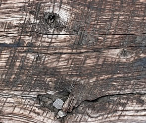 free Rough Wood texture