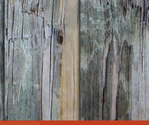free Wood Grain Texture Pack