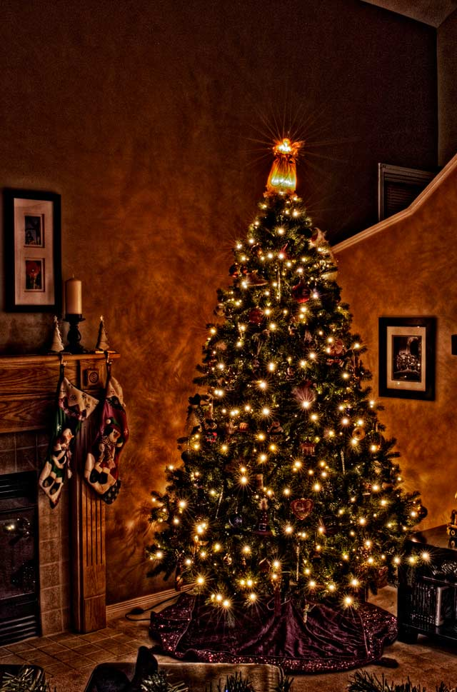 Our Christmas Tree Redo in a gallery of Seasonal and Christmas Photography