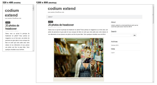 Codium Extend is a minimal and responive theme for WordPress