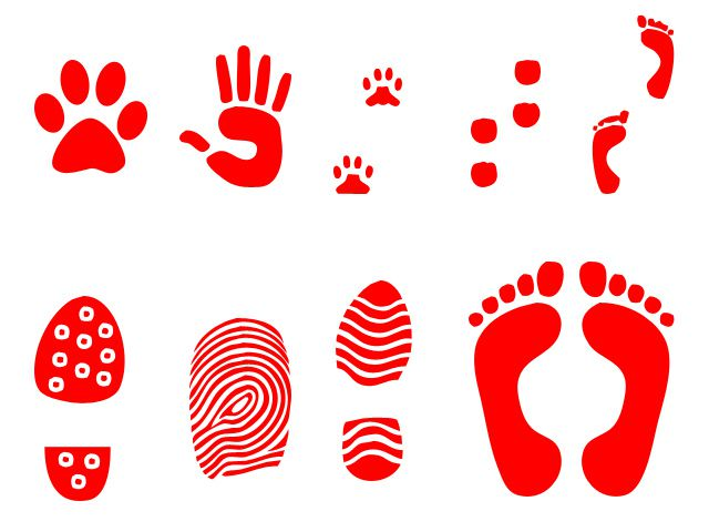 photoshop custom shapes Hand an Foot