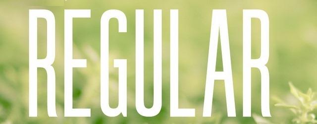 Guilder Font - Web Design Freebies