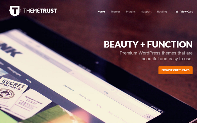 themetrust homepage big fullscreen background image