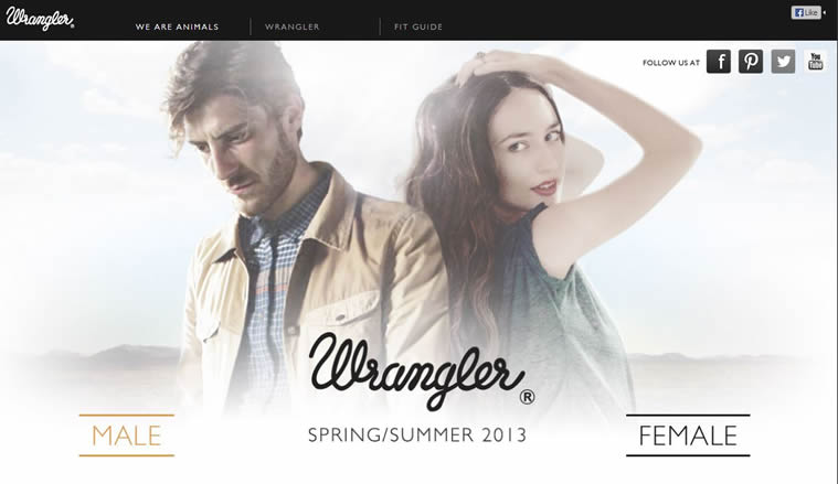Wrangler Europe is a Creative and innovative HTML5 Website