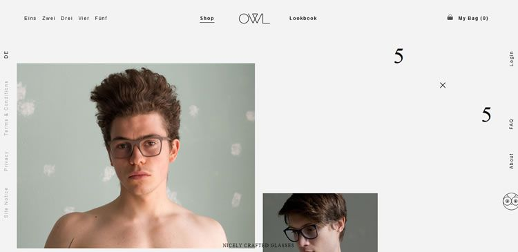 The OWL Shop website example of Ecommerce web design