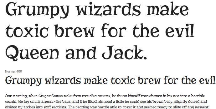 google web font typography risque