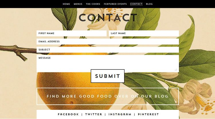the original design Sliding Contact Page from Whoa Nelly Catering