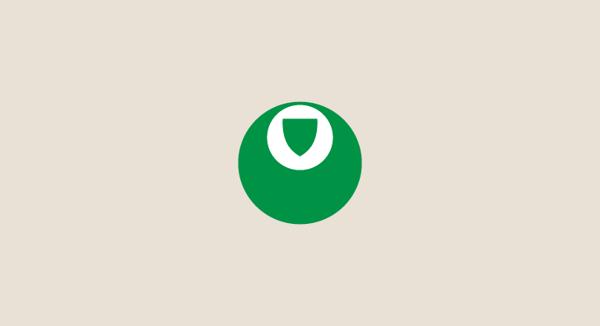 Palmeiras minimal flat football soccer logos badges