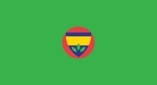 Fenerbahçe minimal flat football soccer logos badges